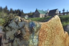 06_02_19-orle-michelsbaude-kobyla-łąka-chatka-orle-jagnięcy-2