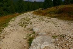 Stara Droga Celna na Jeleniej Łące
