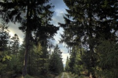 09_19_19-rykowisko-mars-na-plutonie-cicha-równia-michelsbaude-jelenia-łąka-6